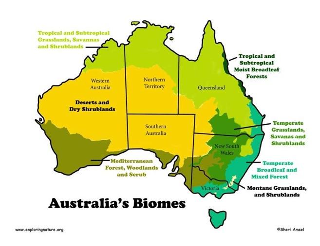Землеустройство в австралии понимал, какой
